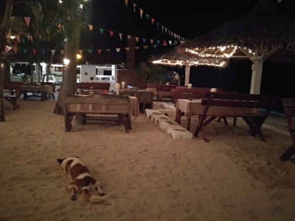 Milky Bay Resort –                            Koh Phangan